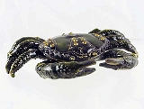Mini Black Crab - Bejeweled Enameled Pewter Hinged Trinket Box